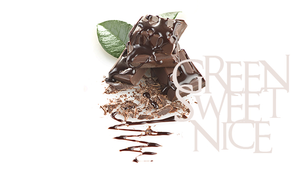 18266804 - close up of chocolate pieces on white background